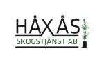 Pracownik leśny - sadzenie drzew w Szwecji