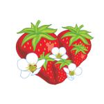 Jordgubbförsäljare