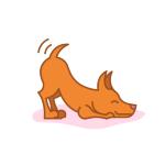 Hundkunnig sökes till hunddagis