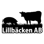 Lillbäcken AB