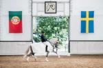 Häst och stallskötsel