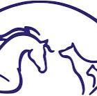Leg.djursjukskötare/ djurvårdare nivå 3 som gillar smådjur och hästar